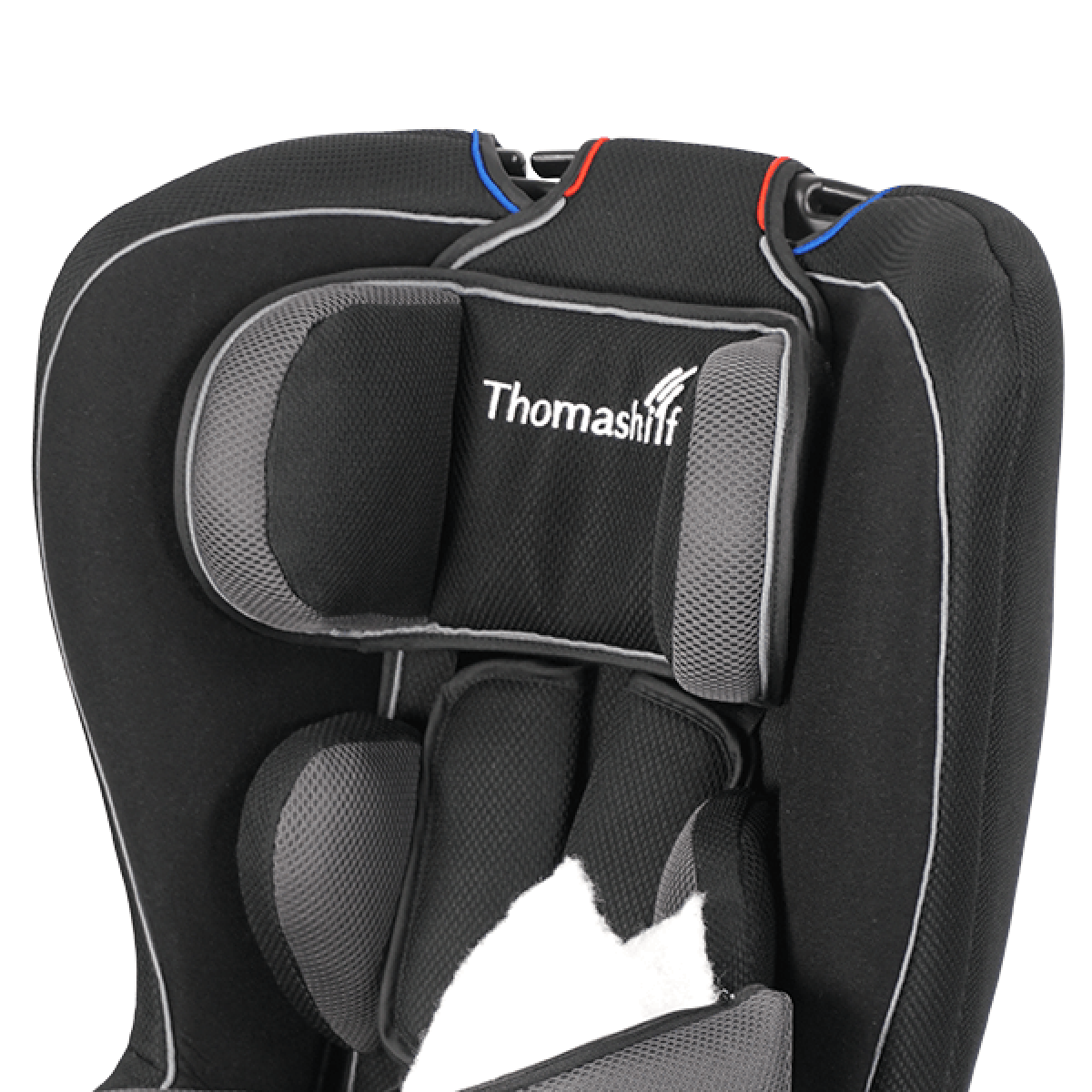 Автомобильное кресло для детей с ДЦП Thomashilfen Co-Pilot