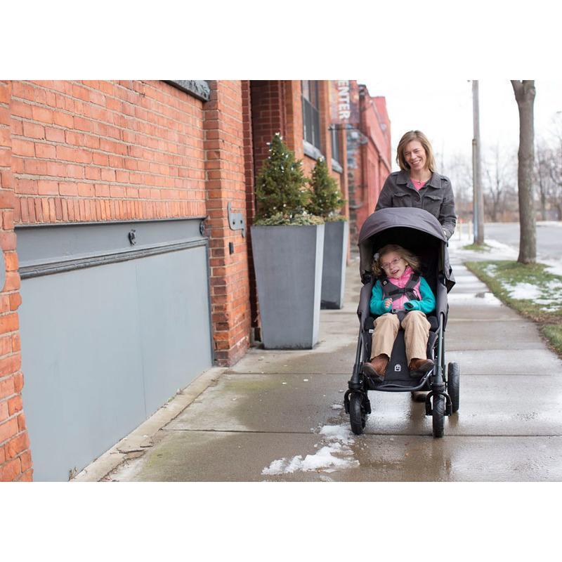 Детская прогулочная коляска Special Tomato EIO