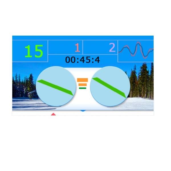 Горнолыжный тренажер PROSKI Simulator Standard